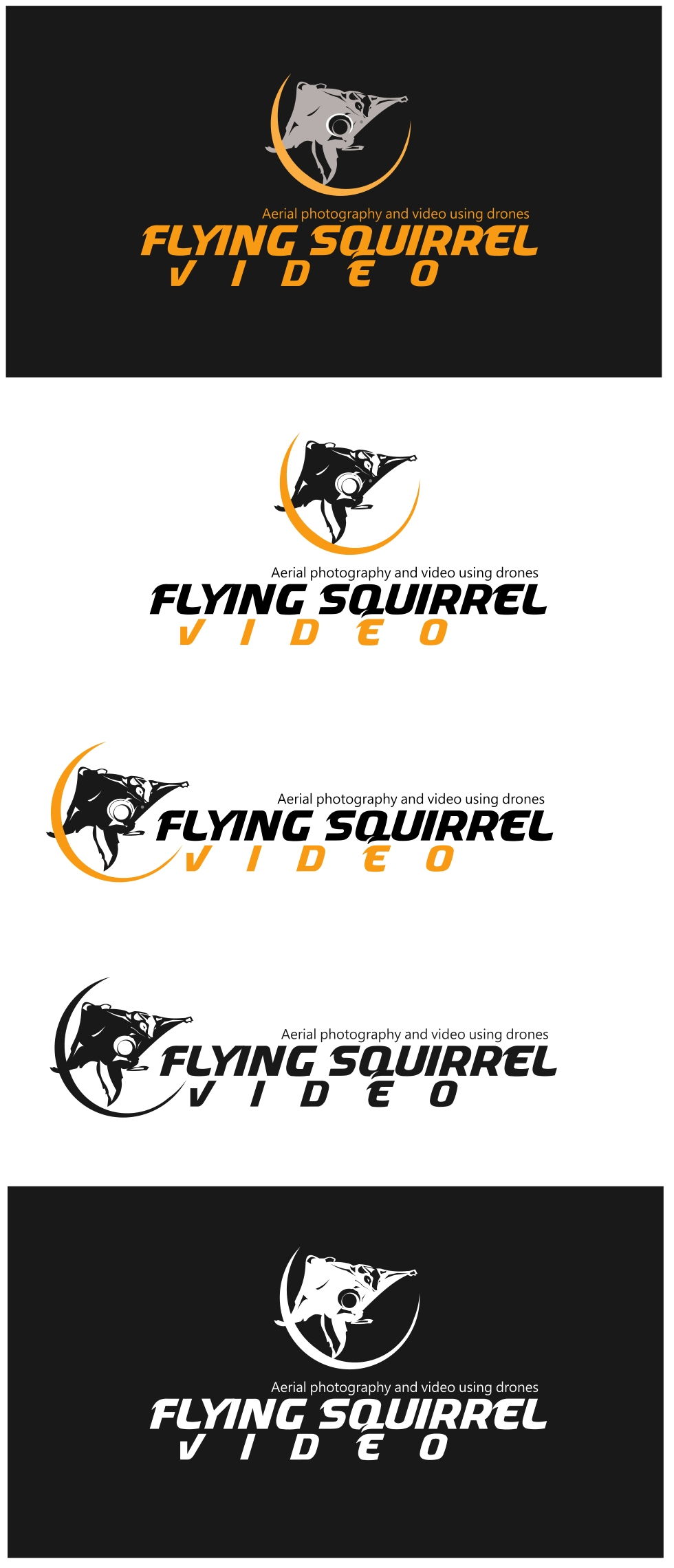 Logo Design by Private User - Entry No. 6 in the Logo Design Contest Artistic Logo Design for Flying squirrel video.