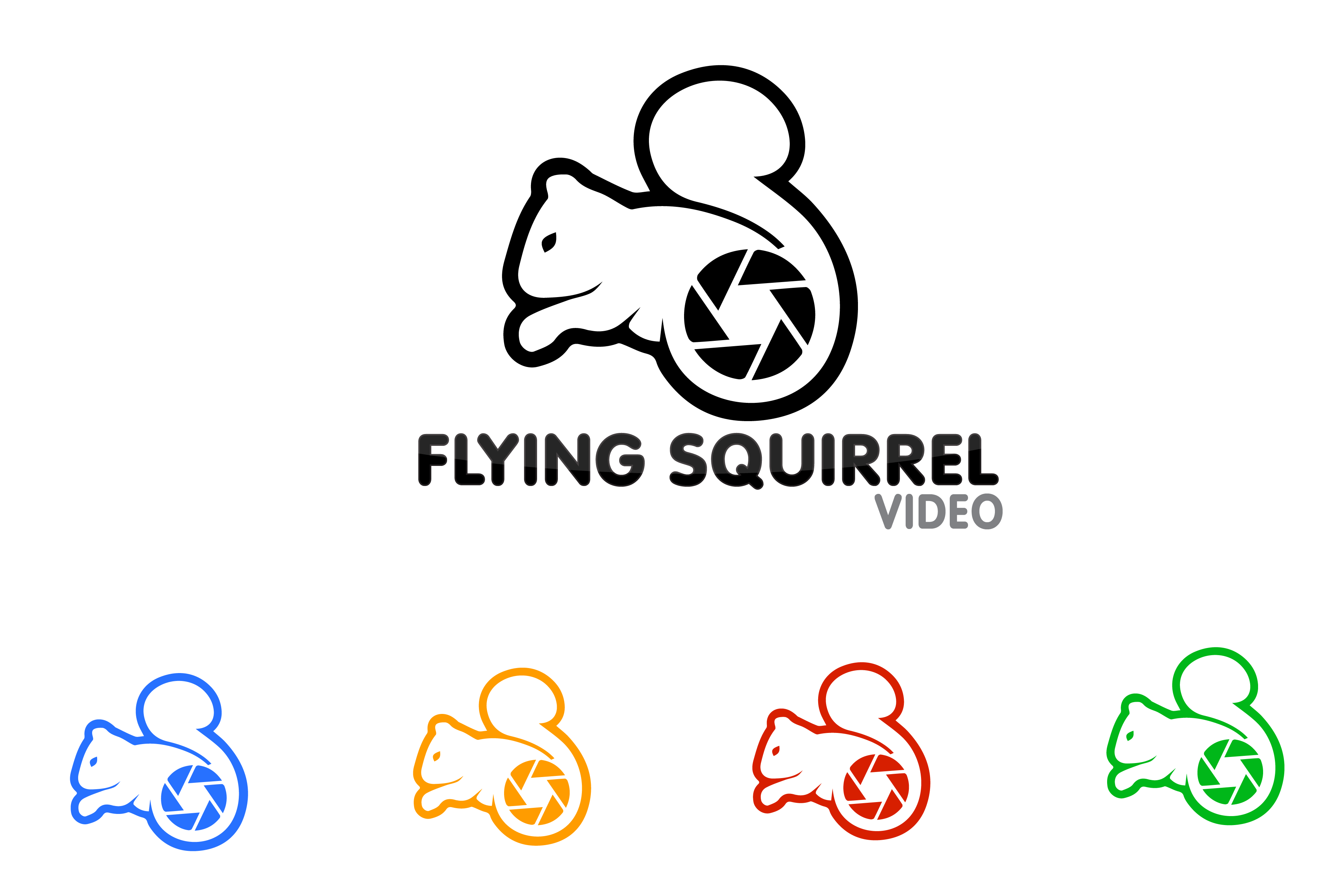 Logo Design by Private User - Entry No. 12 in the Logo Design Contest Artistic Logo Design for Flying squirrel video.