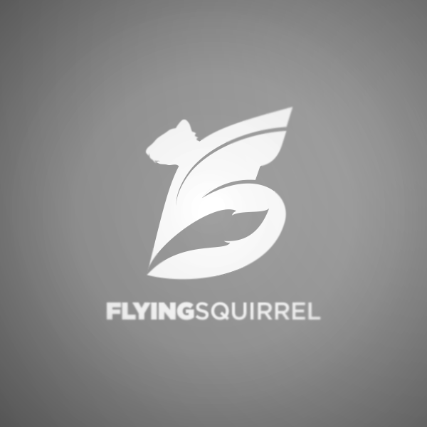 Logo Design by Private User - Entry No. 18 in the Logo Design Contest Artistic Logo Design for Flying squirrel video.