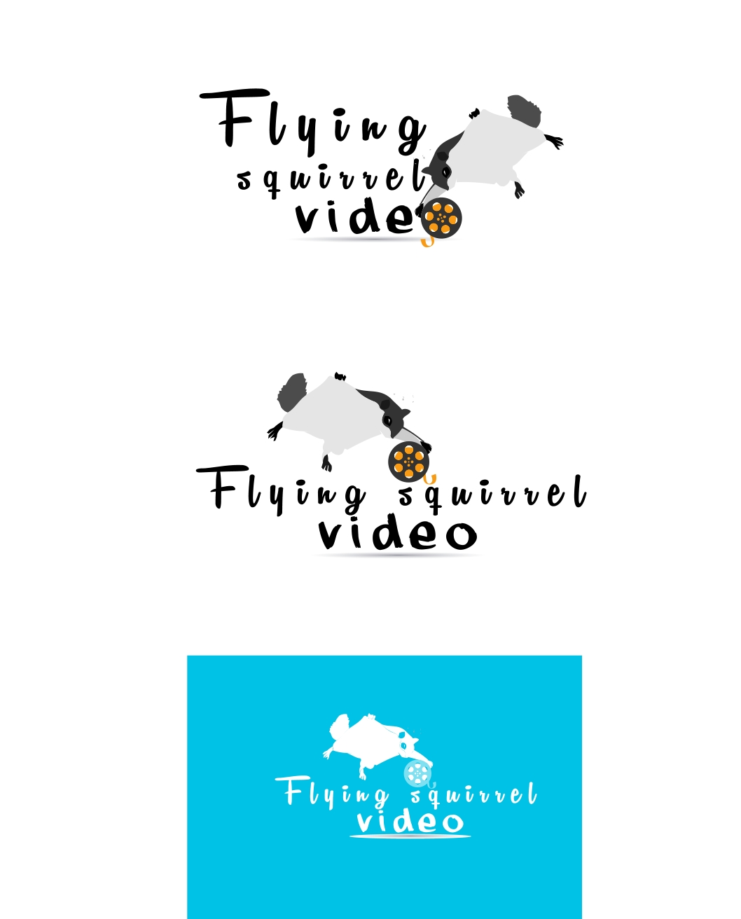 Logo Design by Private User - Entry No. 21 in the Logo Design Contest Artistic Logo Design for Flying squirrel video.