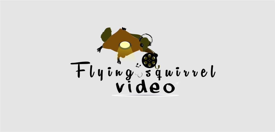 Logo Design by Private User - Entry No. 22 in the Logo Design Contest Artistic Logo Design for Flying squirrel video.