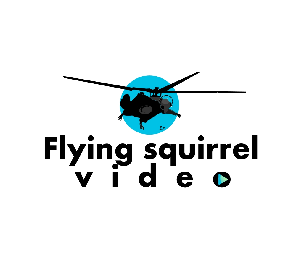 Logo Design by Private User - Entry No. 23 in the Logo Design Contest Artistic Logo Design for Flying squirrel video.