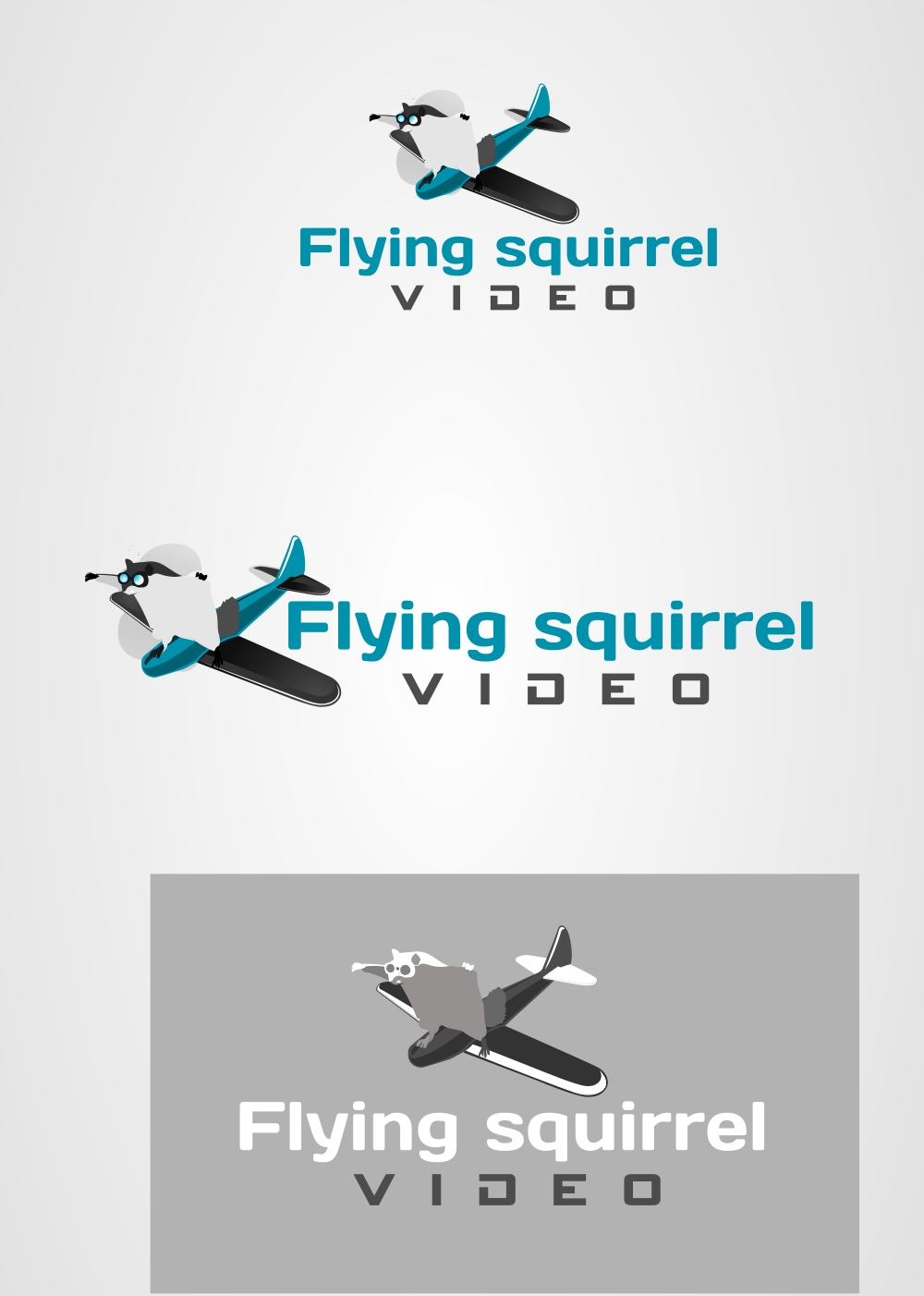 Logo Design by Private User - Entry No. 25 in the Logo Design Contest Artistic Logo Design for Flying squirrel video.
