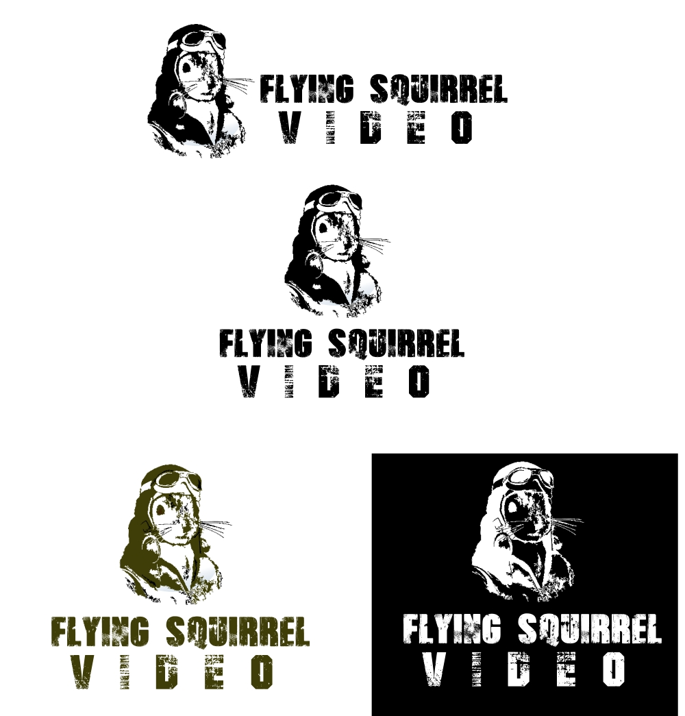 Logo Design by Private User - Entry No. 28 in the Logo Design Contest Artistic Logo Design for Flying squirrel video.