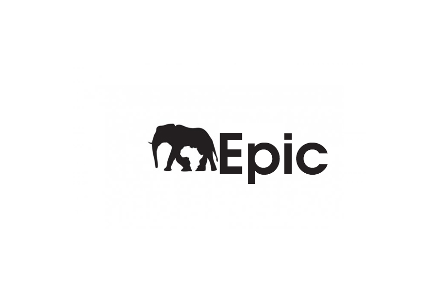 Logo Design by brands_in - Entry No. 64 in the Logo Design Contest Epic logo design.