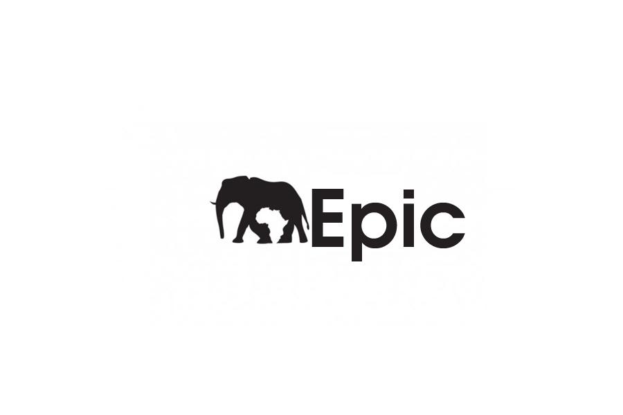 Logo Design by brands_in - Entry No. 64 in the Logo Design Contest Epic logo design.