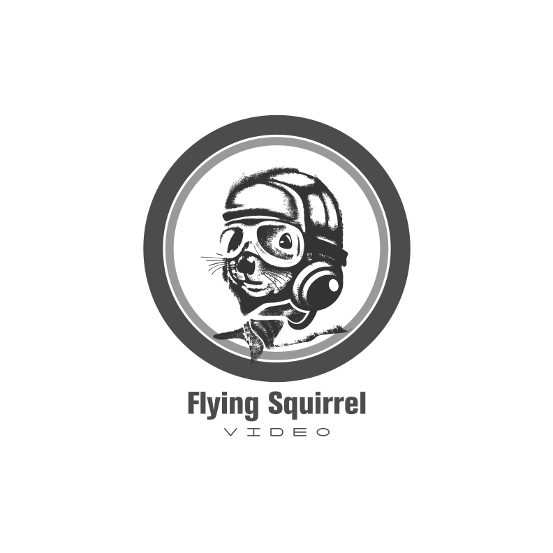 Logo Design by graphicleaf - Entry No. 33 in the Logo Design Contest Artistic Logo Design for Flying squirrel video.