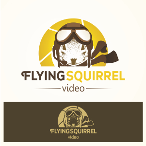 Logo Design by Private User - Entry No. 38 in the Logo Design Contest Artistic Logo Design for Flying squirrel video.