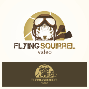 Logo Design by Private User - Entry No. 39 in the Logo Design Contest Artistic Logo Design for Flying squirrel video.