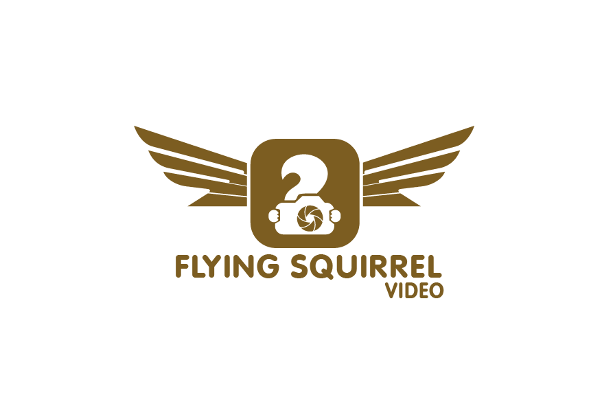 Logo Design by brands_in - Entry No. 43 in the Logo Design Contest Artistic Logo Design for Flying squirrel video.