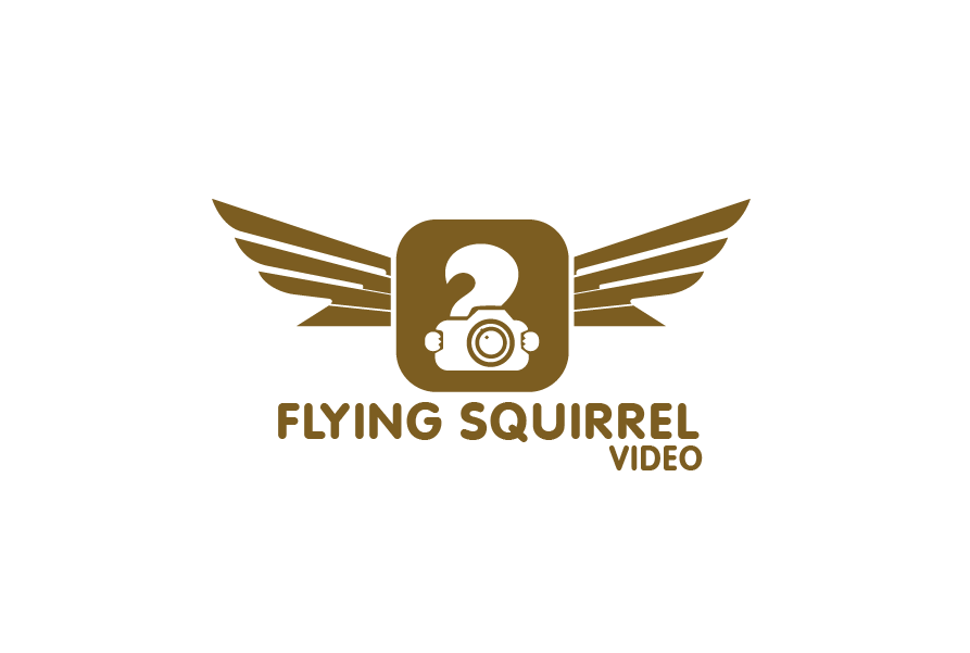 Logo Design by brands_in - Entry No. 44 in the Logo Design Contest Artistic Logo Design for Flying squirrel video.