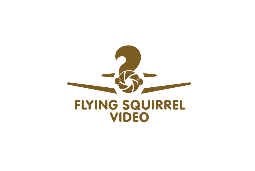 Logo Design by brands_in - Entry No. 46 in the Logo Design Contest Artistic Logo Design for Flying squirrel video.