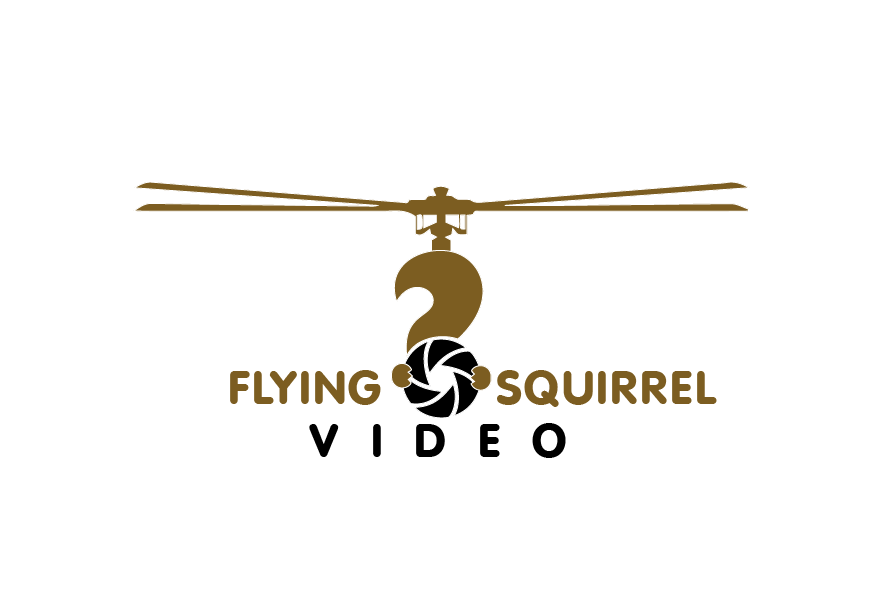 Logo Design by brands_in - Entry No. 49 in the Logo Design Contest Artistic Logo Design for Flying squirrel video.