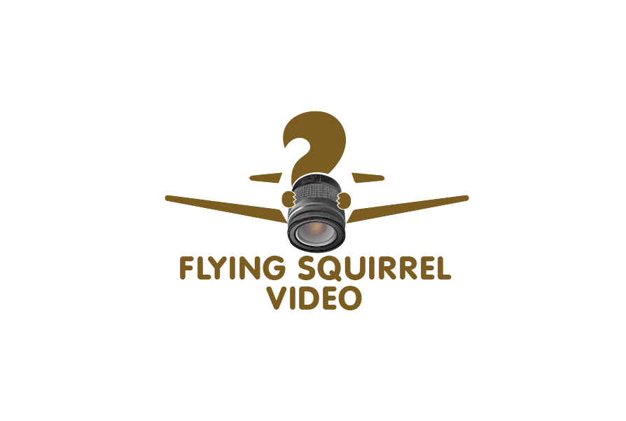 Logo Design by brands_in - Entry No. 50 in the Logo Design Contest Artistic Logo Design for Flying squirrel video.
