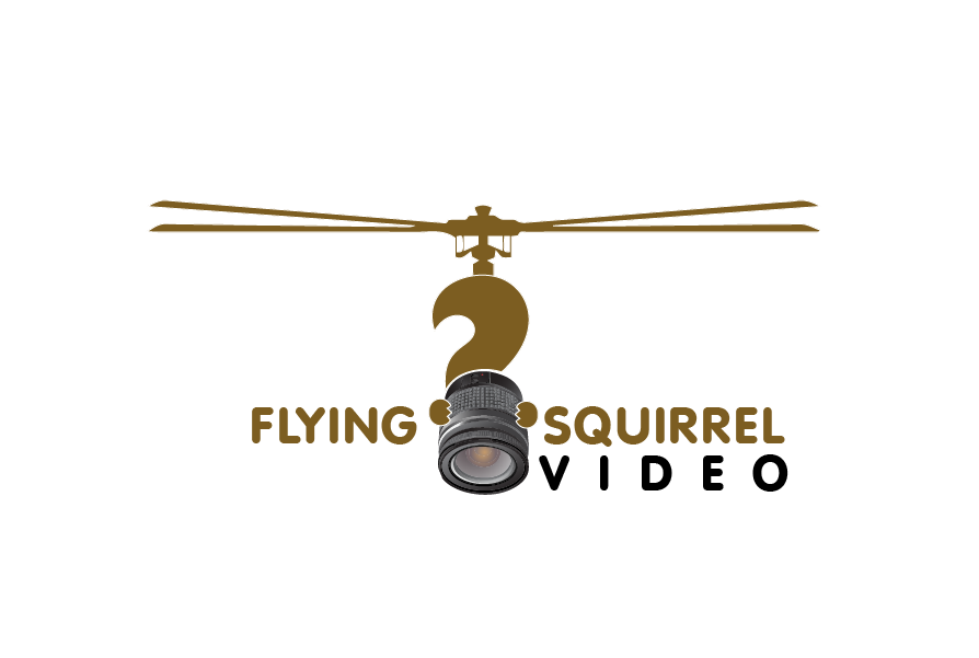 Logo Design by brands_in - Entry No. 51 in the Logo Design Contest Artistic Logo Design for Flying squirrel video.