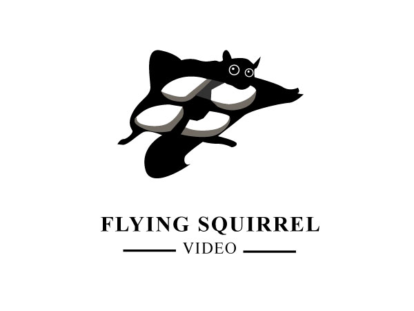 Logo Design by Nirmali Kaushalya - Entry No. 53 in the Logo Design Contest Artistic Logo Design for Flying squirrel video.