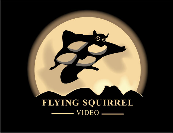 Logo Design by Nirmali Kaushalya - Entry No. 54 in the Logo Design Contest Artistic Logo Design for Flying squirrel video.