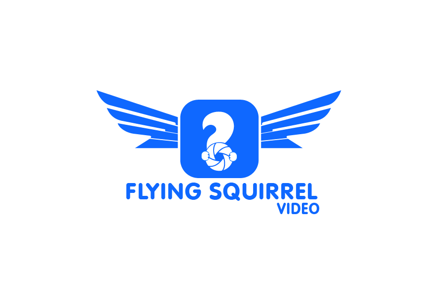 Logo Design by brands_in - Entry No. 55 in the Logo Design Contest Artistic Logo Design for Flying squirrel video.
