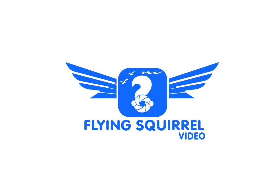 Logo Design by brands_in - Entry No. 57 in the Logo Design Contest Artistic Logo Design for Flying squirrel video.