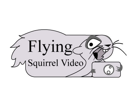 Logo Design by Nirmali Kaushalya - Entry No. 72 in the Logo Design Contest Artistic Logo Design for Flying squirrel video.