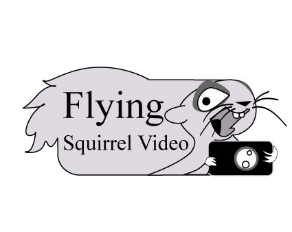 Logo Design by Nirmali Kaushalya - Entry No. 73 in the Logo Design Contest Artistic Logo Design for Flying squirrel video.