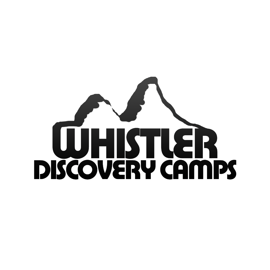 Logo Design by KingCustoms - Entry No. 16 in the Logo Design Contest Captivating Logo Design for Whistler Discovery Camps.