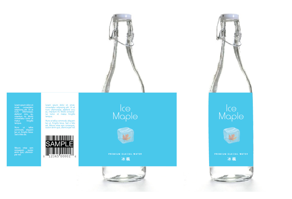 Packaging Design by Christina Evans - Entry No. 14 in the Packaging Design Contest Unique Label/Packaging Design Wanted for Premium Bottled Water (Maple Ice).