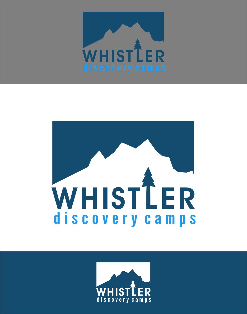 Logo Design by RasYa Muhammad Athaya - Entry No. 41 in the Logo Design Contest Captivating Logo Design for Whistler Discovery Camps.