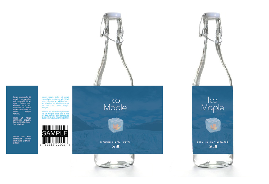 Packaging Design by Christina Evans - Entry No. 33 in the Packaging Design Contest Unique Label/Packaging Design Wanted for Premium Bottled Water (Maple Ice).