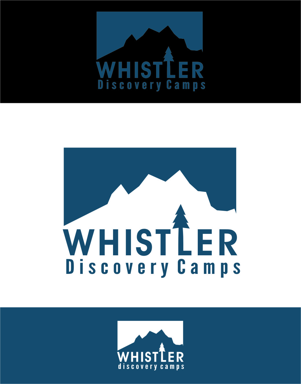 Logo Design by RasYa Muhammad Athaya - Entry No. 49 in the Logo Design Contest Captivating Logo Design for Whistler Discovery Camps.