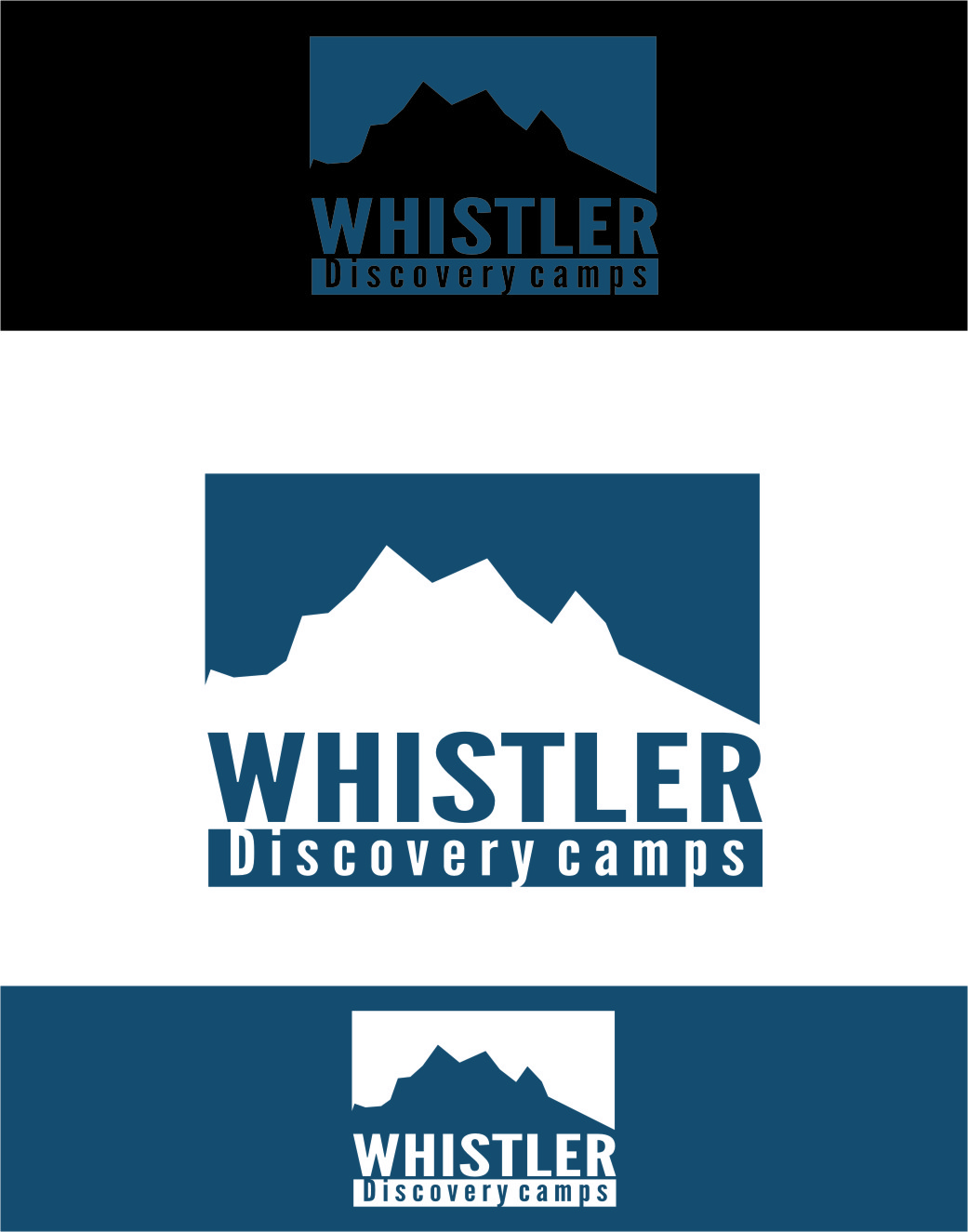 Logo Design by RasYa Muhammad Athaya - Entry No. 50 in the Logo Design Contest Captivating Logo Design for Whistler Discovery Camps.