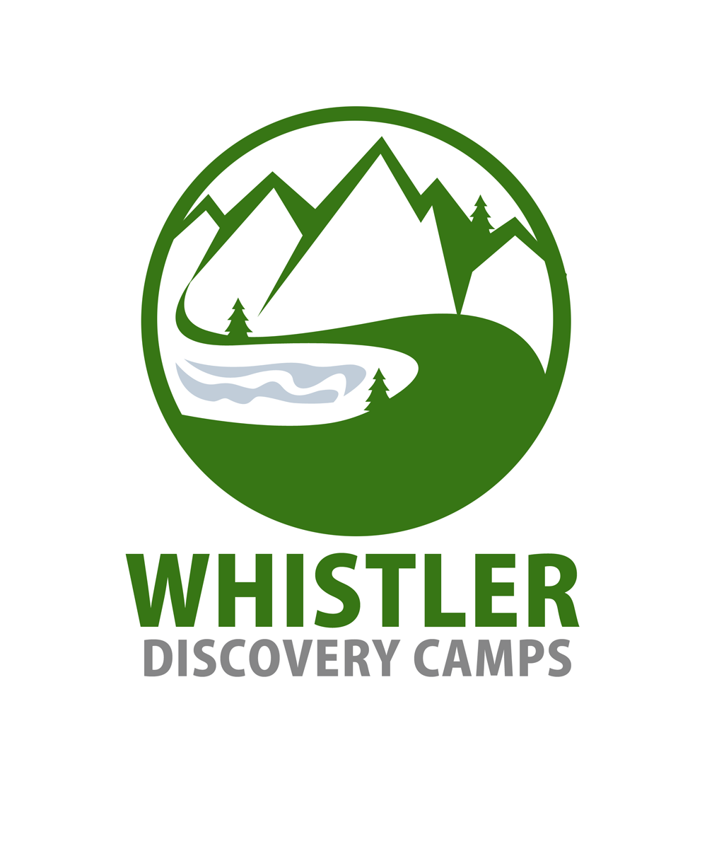 Logo Design by Private User - Entry No. 84 in the Logo Design Contest Captivating Logo Design for Whistler Discovery Camps.