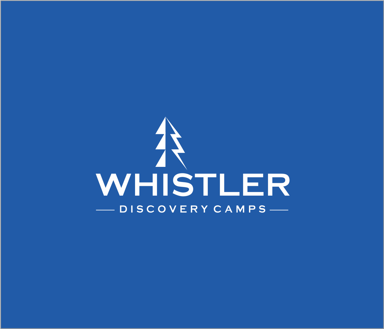 Logo Design by Armada Jamaluddin - Entry No. 119 in the Logo Design Contest Captivating Logo Design for Whistler Discovery Camps.