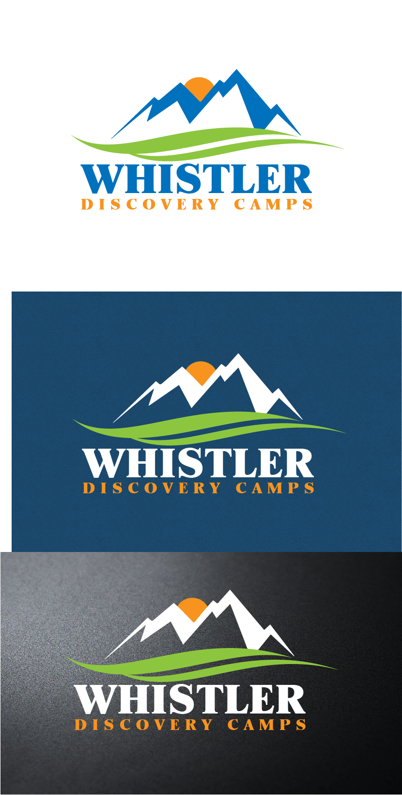 Logo Design by brands_in - Entry No. 136 in the Logo Design Contest Captivating Logo Design for Whistler Discovery Camps.