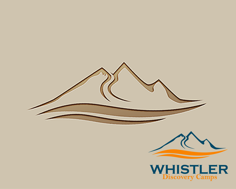 Logo Design by Juan Luna - Entry No. 143 in the Logo Design Contest Captivating Logo Design for Whistler Discovery Camps.