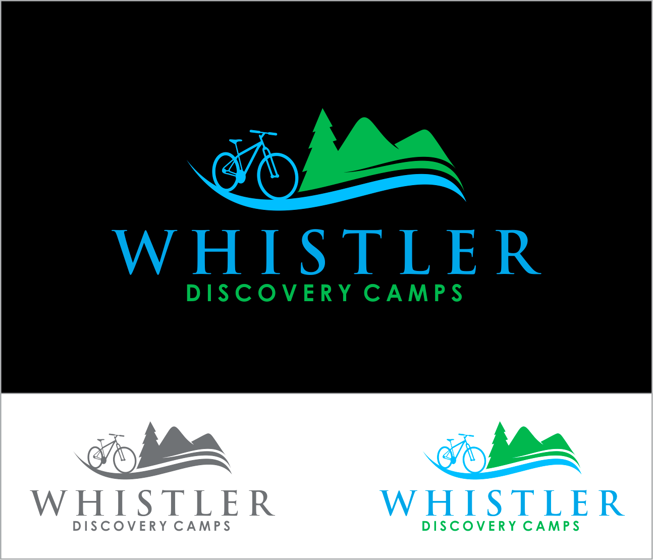 Logo Design by Armada Jamaluddin - Entry No. 156 in the Logo Design Contest Captivating Logo Design for Whistler Discovery Camps.