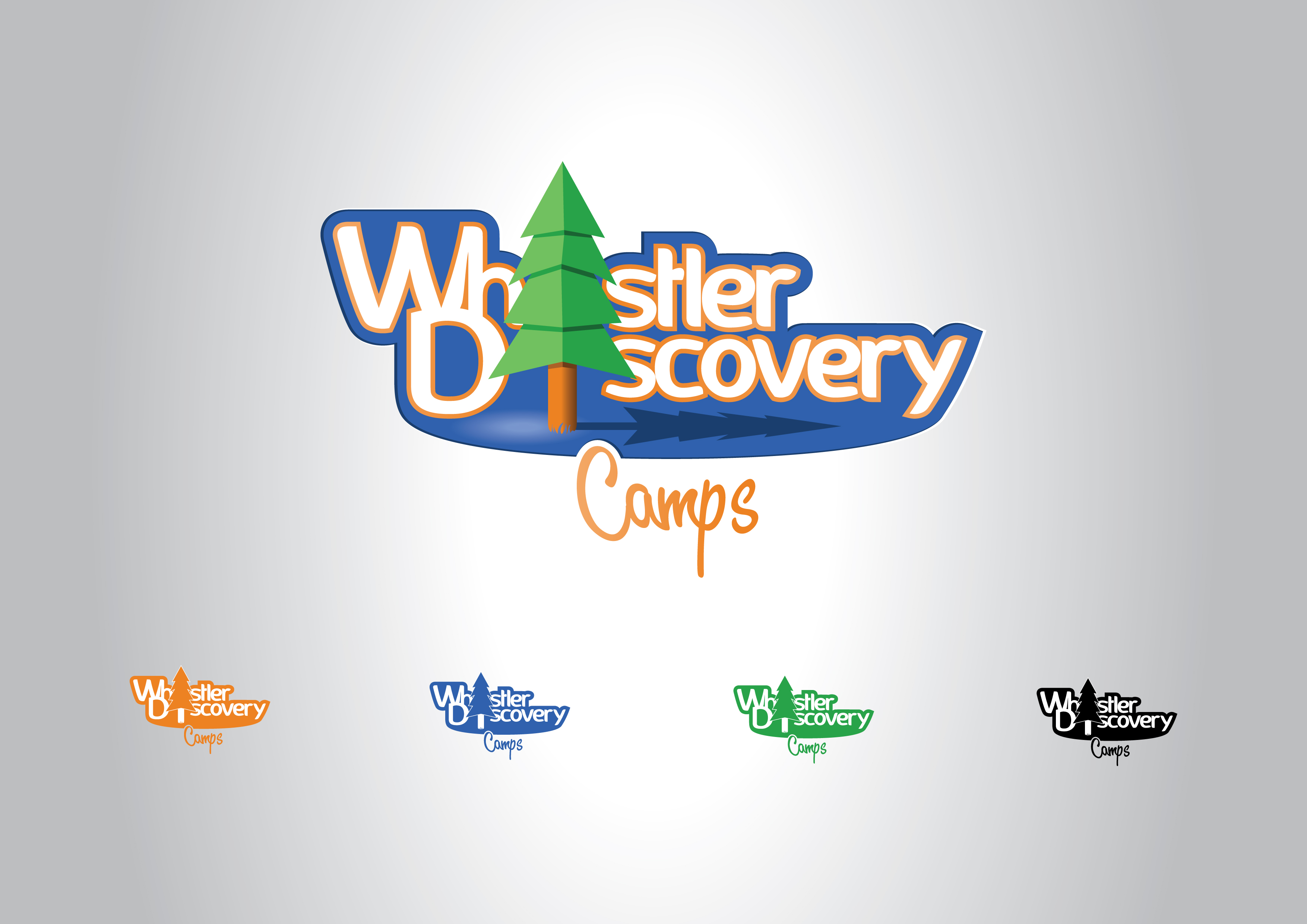 Logo Design by Private User - Entry No. 177 in the Logo Design Contest Captivating Logo Design for Whistler Discovery Camps.