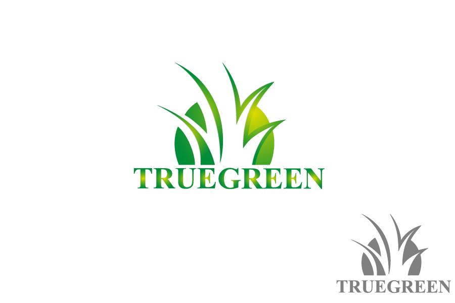 Logo Design by Private User - Entry No. 10 in the Logo Design Contest Fun Logo Design for TRUE GREEN.