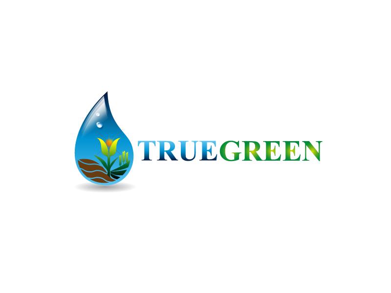 Logo Design by Private User - Entry No. 27 in the Logo Design Contest Fun Logo Design for TRUE GREEN.