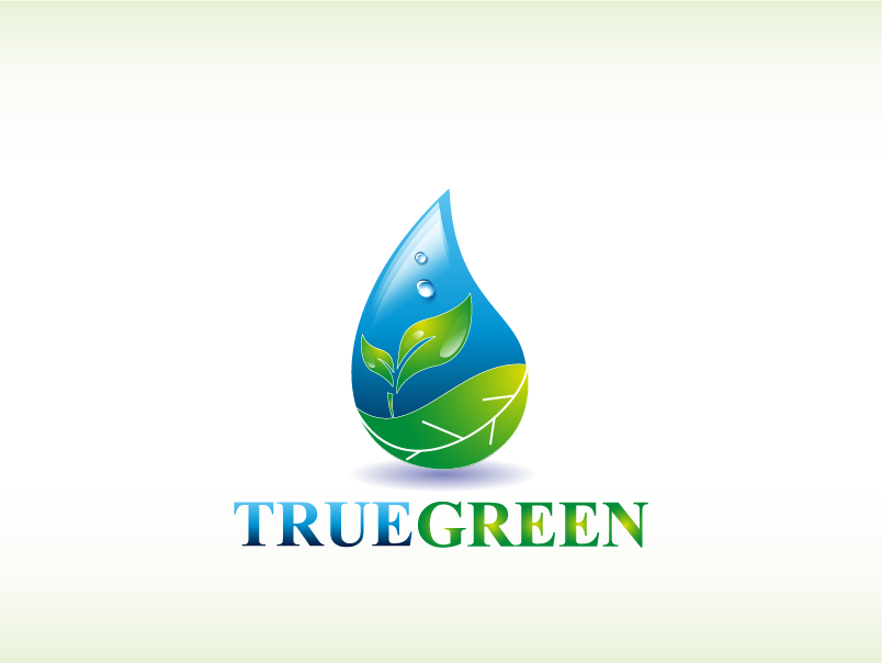 Logo Design by Private User - Entry No. 28 in the Logo Design Contest Fun Logo Design for TRUE GREEN.