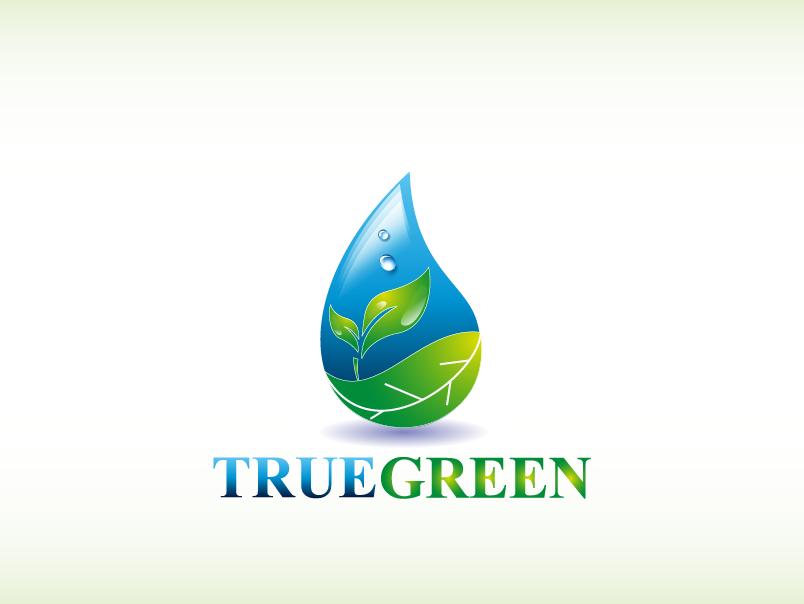 Logo Design by Private User - Entry No. 28 in the Logo Design Contest Fun Logo Design for TRUE GREEN.