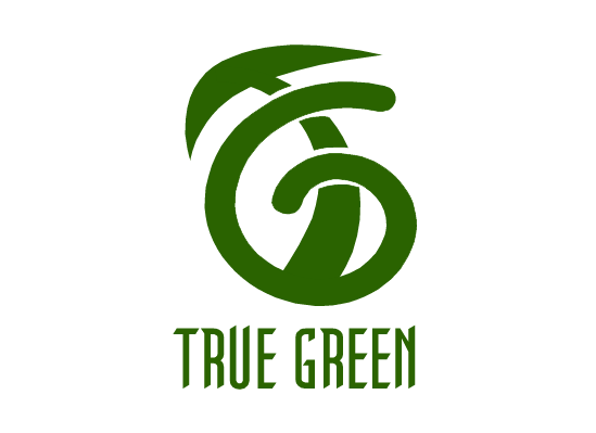 Logo Design by Ismail Adhi Wibowo - Entry No. 34 in the Logo Design Contest Fun Logo Design for TRUE GREEN.