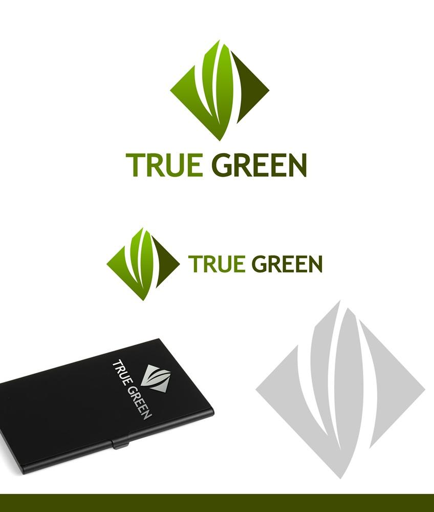 Logo Design by Fita Tiara Sani - Entry No. 35 in the Logo Design Contest Fun Logo Design for TRUE GREEN.