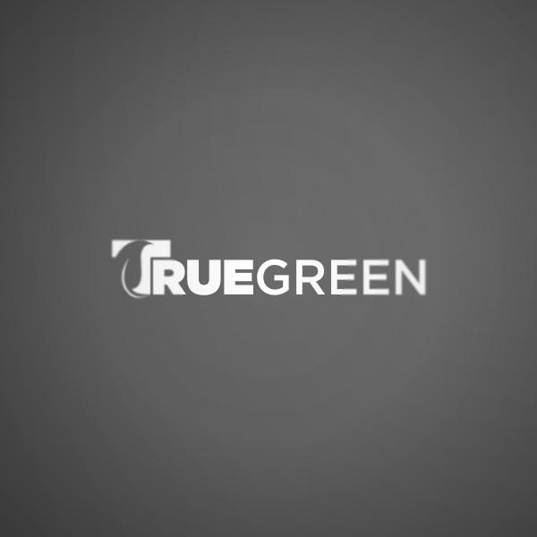 Logo Design by Private User - Entry No. 38 in the Logo Design Contest Fun Logo Design for TRUE GREEN.