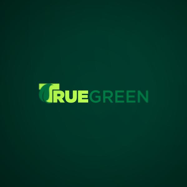 Logo Design by Private User - Entry No. 39 in the Logo Design Contest Fun Logo Design for TRUE GREEN.