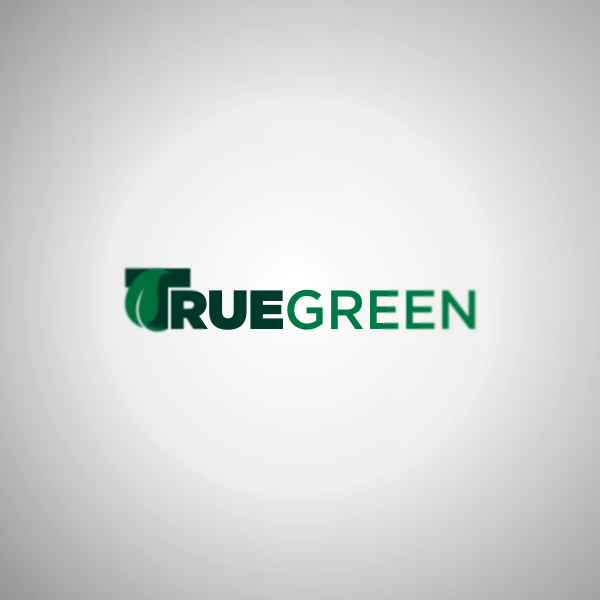 Logo Design by Private User - Entry No. 40 in the Logo Design Contest Fun Logo Design for TRUE GREEN.