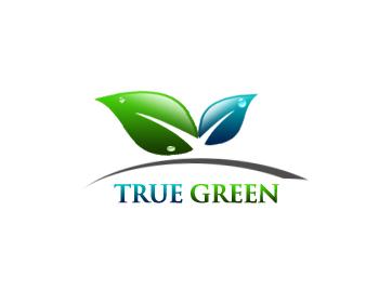 Logo Design by Crystal Desizns - Entry No. 44 in the Logo Design Contest Fun Logo Design for TRUE GREEN.