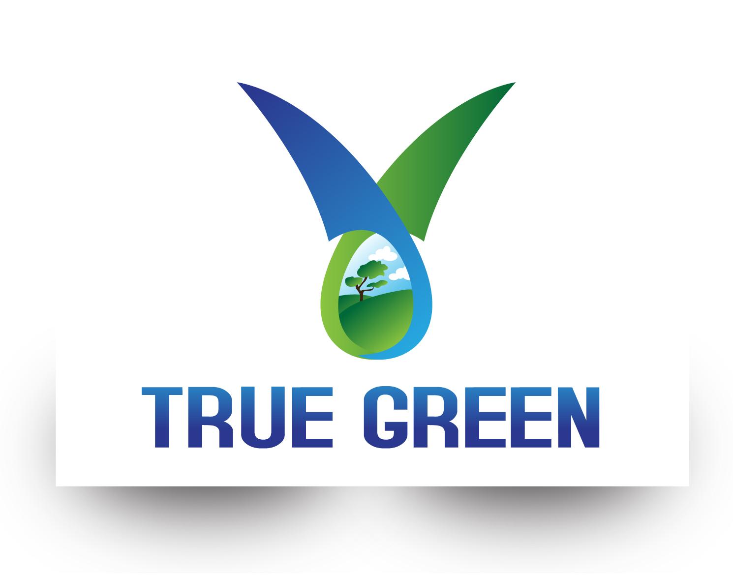 Logo Design by demang - Entry No. 59 in the Logo Design Contest Fun Logo Design for TRUE GREEN.