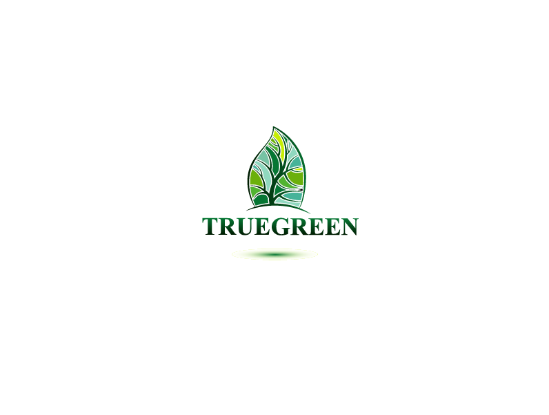 Logo Design by Private User - Entry No. 61 in the Logo Design Contest Fun Logo Design for TRUE GREEN.