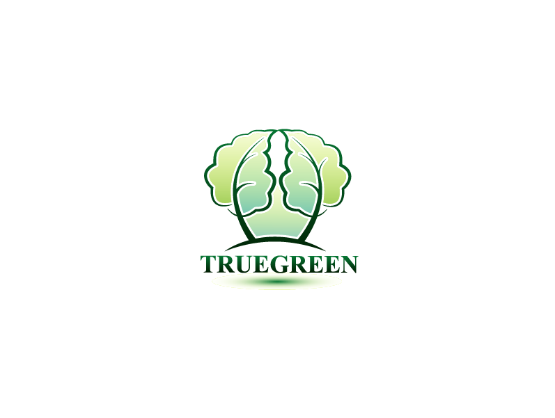 Logo Design by Private User - Entry No. 62 in the Logo Design Contest Fun Logo Design for TRUE GREEN.